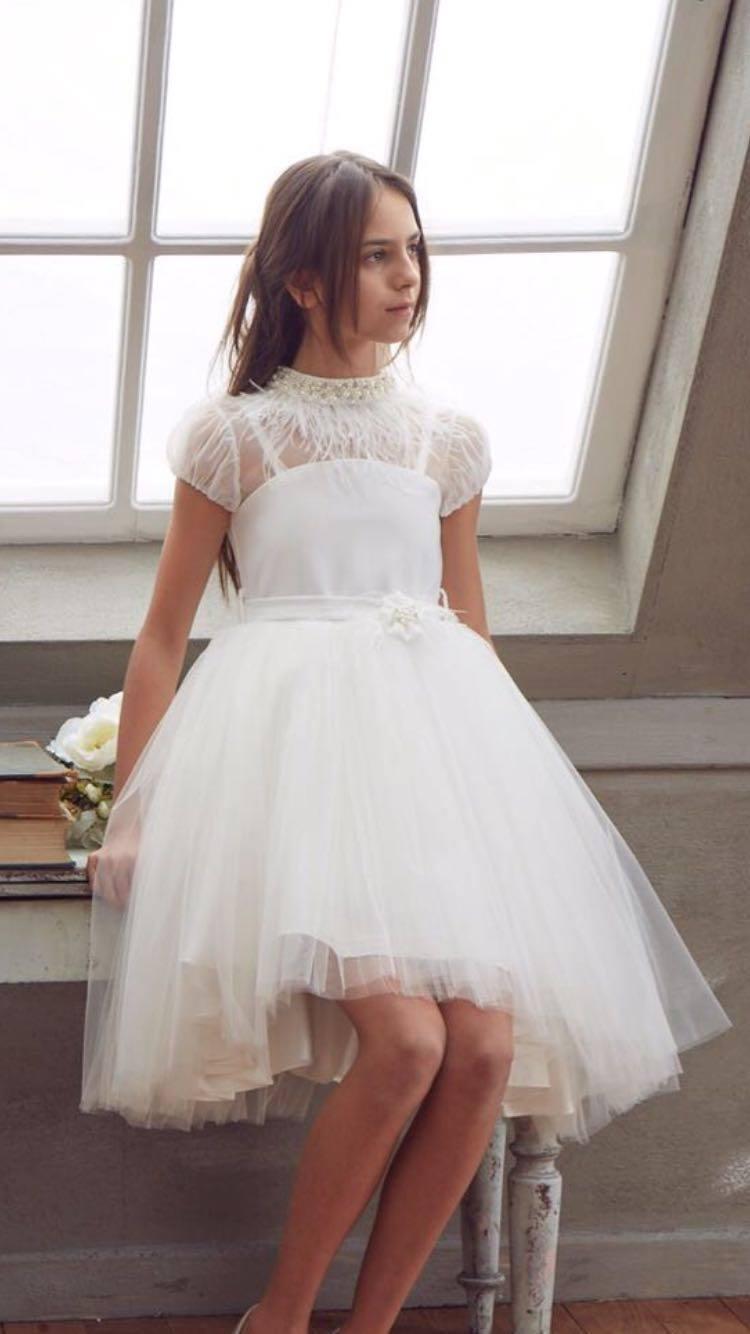 Feather Chrystal Dalia Dress